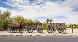 Twenty Mule Team Wagon Train in Death Valley National Park