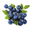 Natural picked blueberries isolated