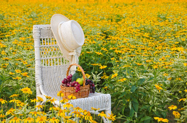 hat and fruit on wicker chair in daisy field