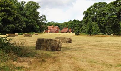 English Rural Landscape in Summer