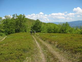 Туристы на равнинной дороге в горах