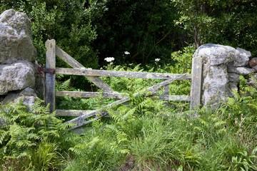 Old farm gate, Cornwall