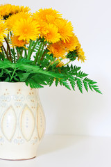 dandelions in a clay vase
