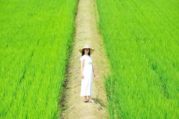 日本の農業と白いワンピースを着た綺麗な女性