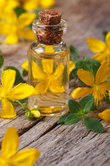 extract from the flowers of St. John's wort macro vertical