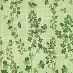 seamless texture of thyme..