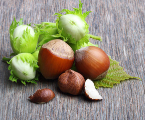Forest nuts hazelnuts
