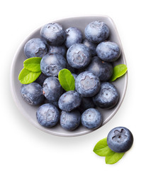 Blueberry with leaves isolated