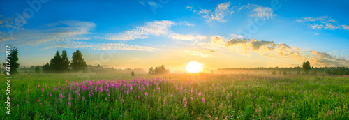 landscape with the sunrise, a blossoming meadow  panorama - 68271982