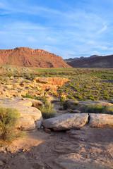Arches National Park Moab - Utah - United States
