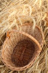 empty basket in field