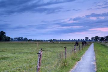 sunrise on Dutch farmland