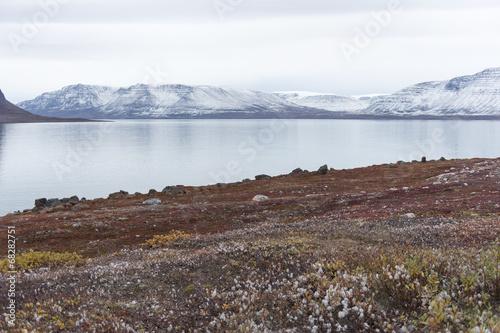 In de dag Poolcirkel Arctic landscape in Greenland