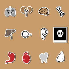 Organs vector health care set
