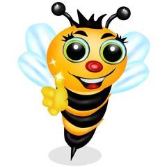 ape regina new
