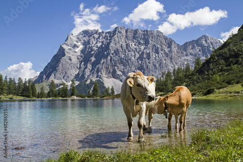 Almidylle im Wettersteingebirge © Hans und Christa Ede