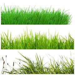 Gras Hintergründe
