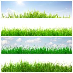 Schöne Gras Hintergründe
