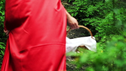 Red riding hood with basket walking in forest