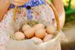 Eggs in wicker basket in female hands outdoors