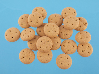 Close up of round dog biscuits on a blue background