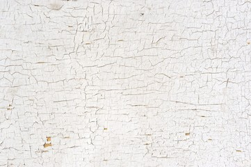 Peeling Paint on the Wall