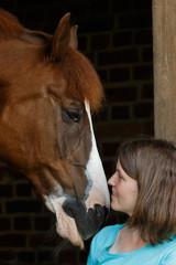 Freundschaft zwischen Pferd und Frau