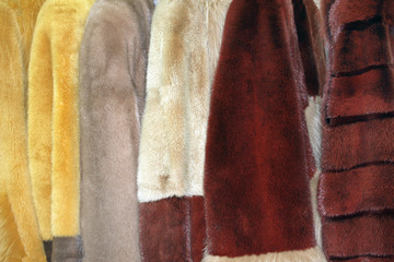 Row of fur coats of different colors