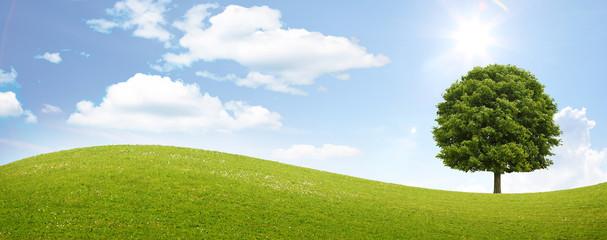 Saubere Umwelt Panorama