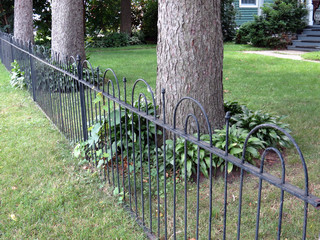 Old, Wrought Iron Fence
