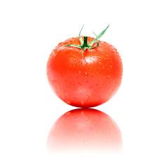 Perfekte Bio Tomate