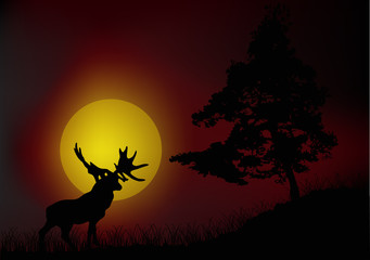 pine and old deer silhouettes at red sunset