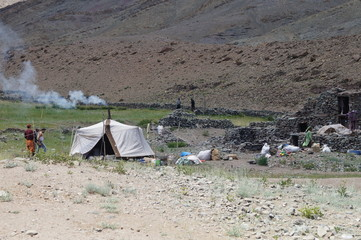 himalya nomad