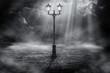 Lone streetlight - 68308904