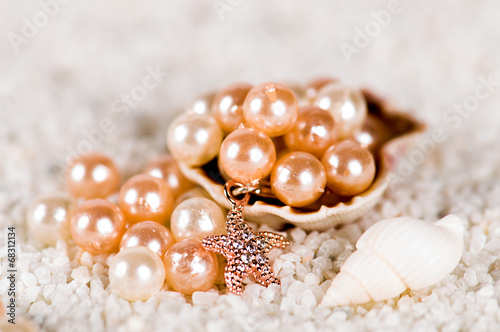 pearl in the shell - 68312134