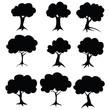 Stencil trees. Raster