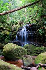 Mossy waterfall