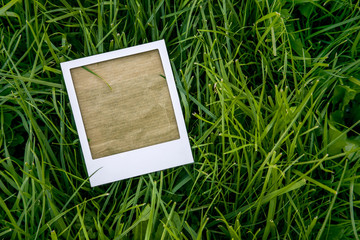 instant photo frame on the grass
