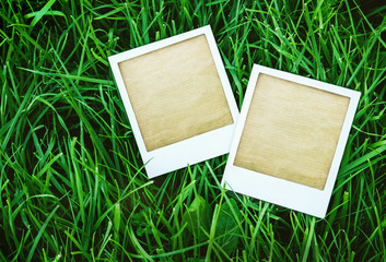 two instant photo frames on the grass