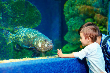 happy kid communicating with fish in oceanarium