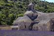 Lavanda abbazia