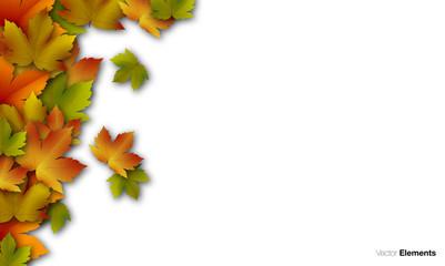 autunno foglie, foglie secche