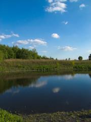 Kleiner Teich 2