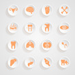 Body Icons button shadows  vector set