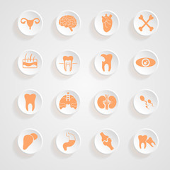 Body Icons button shadows  vector set