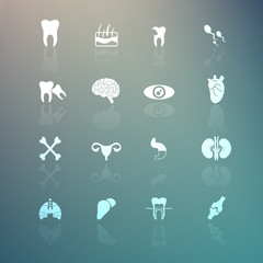 Body Icons  set on Retina background