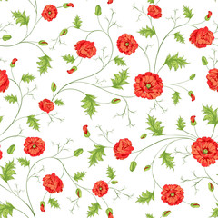 Pattern of poppy flowers