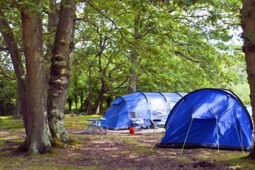 Big blue family size tents pitched in woodland camping site