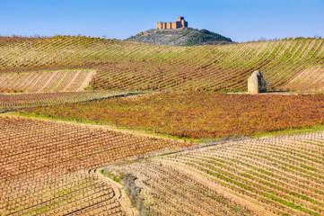 Viñedo en otoño junto al castillo de Davalillo, La Rioja