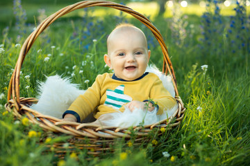 small smiling childin sitting in a basket